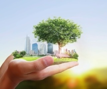 Going green can you help save money on your property tax assessment.